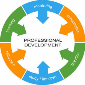 professional-development-essential-skills